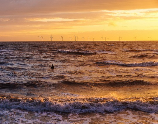 wind farm at sunset with human in sea in foreground