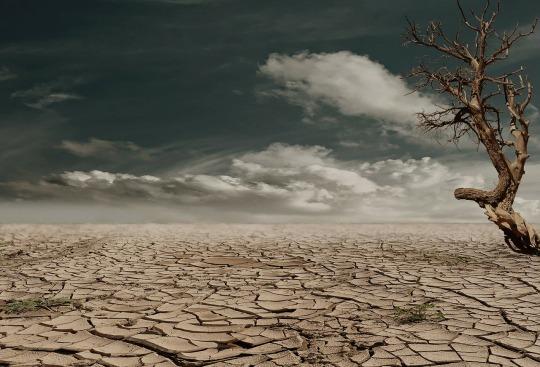 desert-279862_1280.jpg