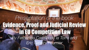 Evidence in Court? A new standard for competition law cases